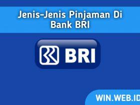 Jenis-Jenis Pinjaman di Bank BRI