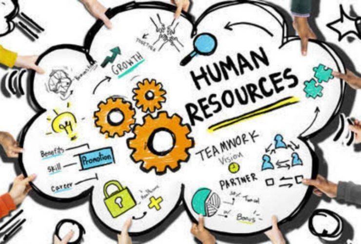 peran HR Consultan yang tak banyak diketahui